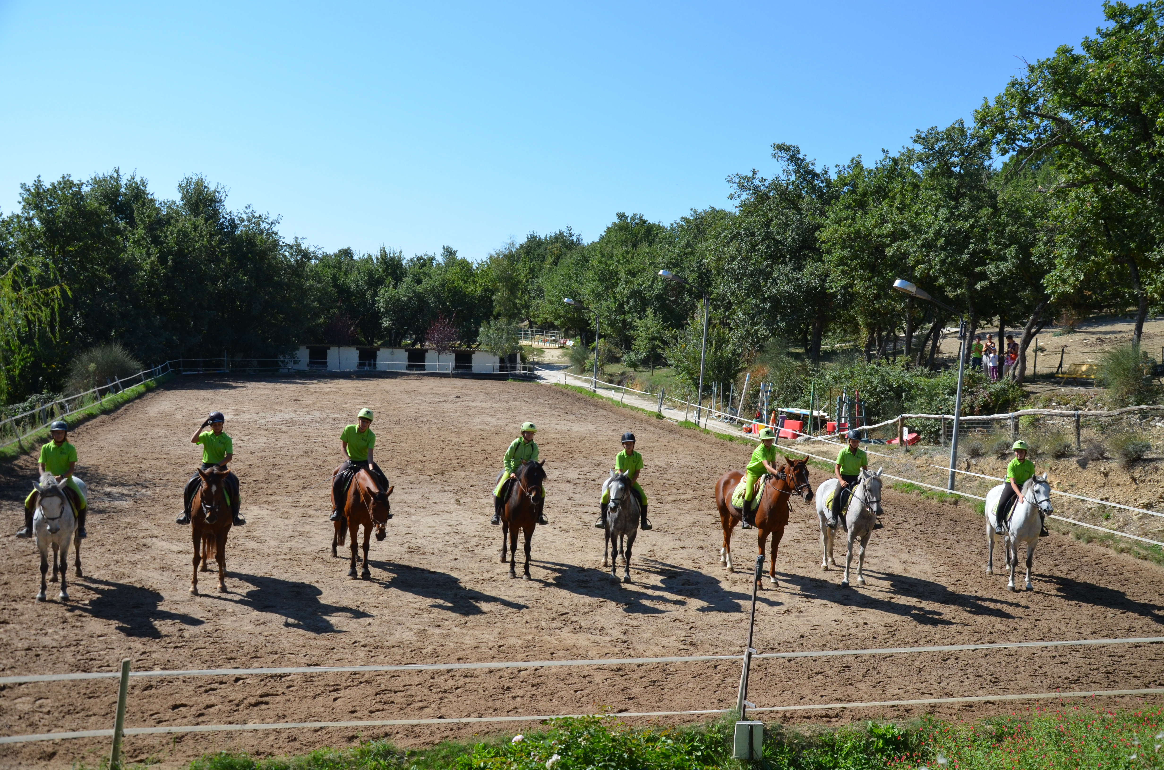 Compétition Poneys et Amateur Gard