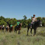 Balade à cheval près de Uzès